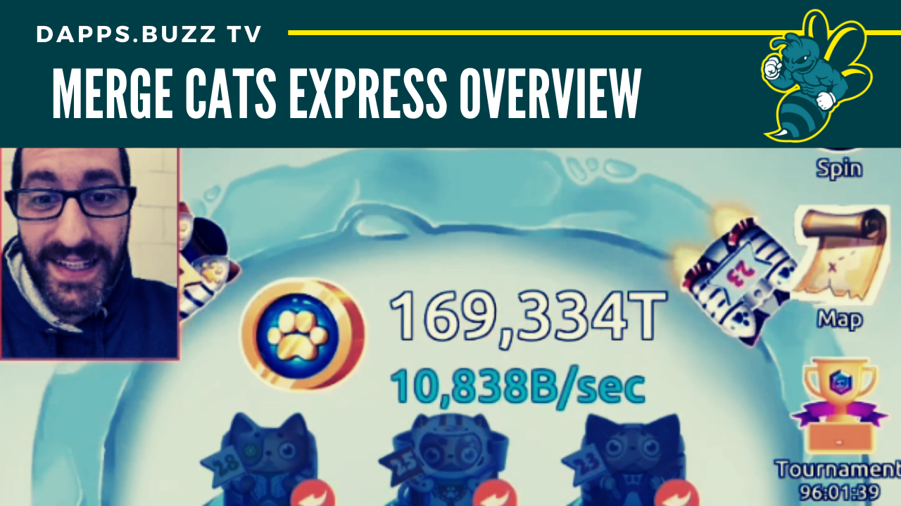 Merge Cats Express Overview
