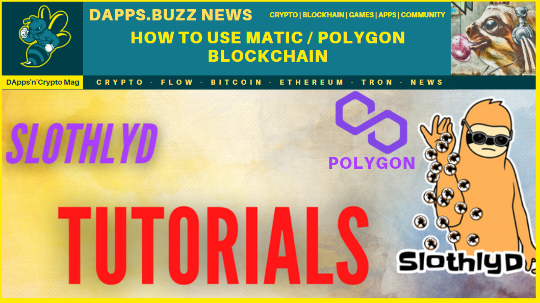 How to use Polygon (Matic)
